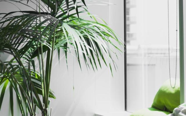 タケソー住空間とは、タケソー住空間の考える家づくり